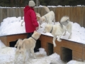 2011-februar-bifrost